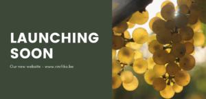 Vinifika-launching-soon